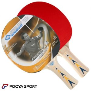 Donic Level 300 Ping Pong Racket